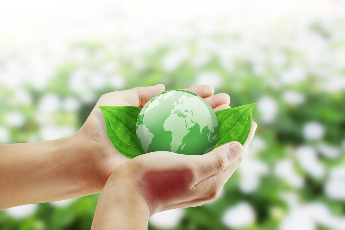 Intermediazione e consulenza ambientale